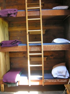 Bunks at the Zealand Hut